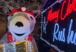 Rushden will shine bright this year - *Virtual Christmas Light Switch On*
